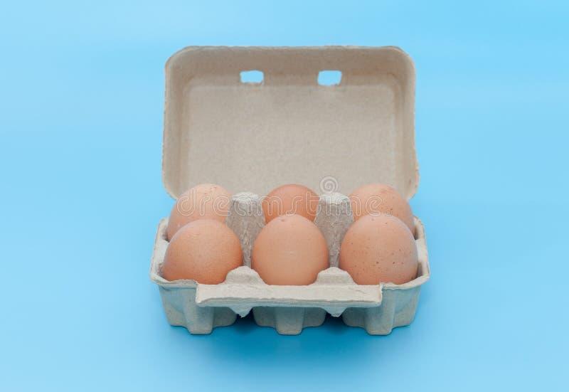 Contenitore di carta di vassoio dell'uovo fotografia stock