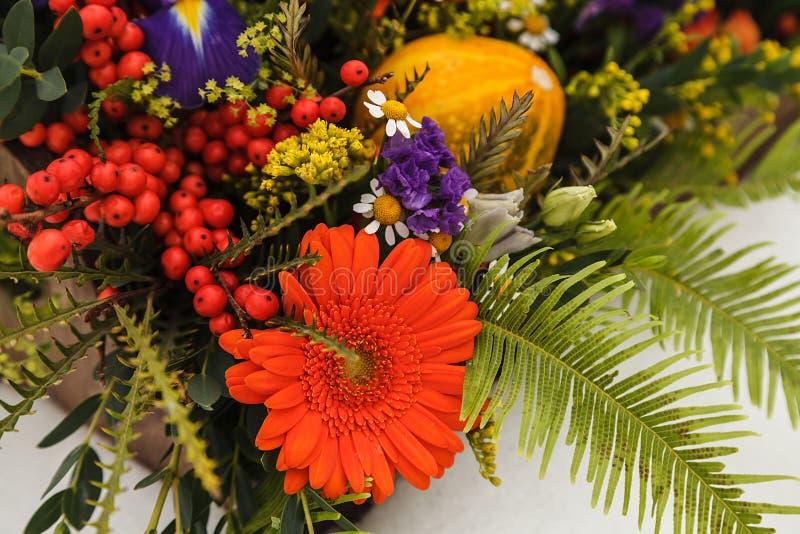 Contenitore di fiore di autunno con i maccheroni su fondo bianco immagine stock libera da diritti