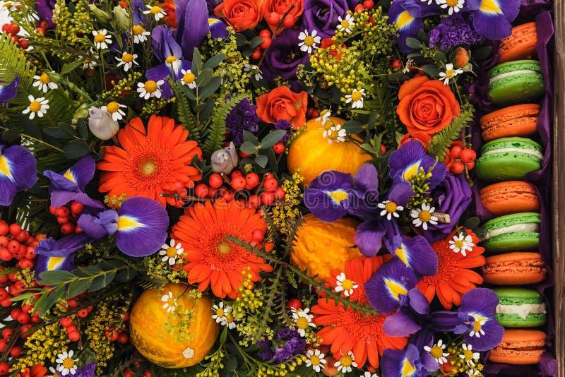 Contenitore di fiore di autunno con i maccheroni su fondo bianco immagine stock