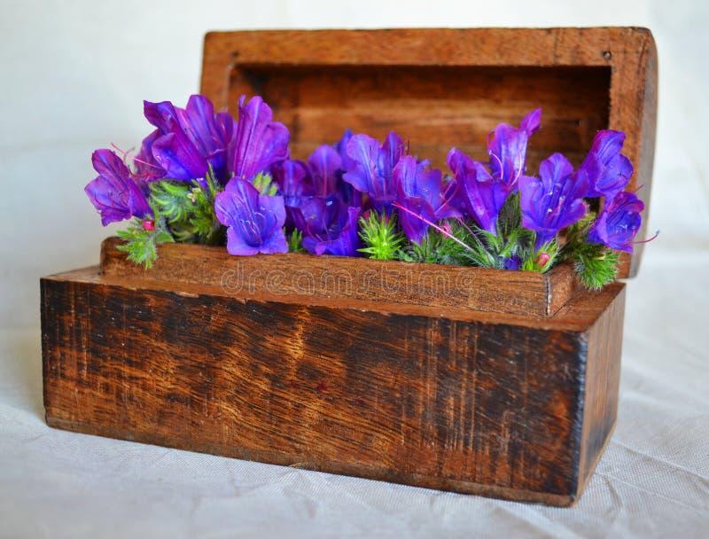 Contenitore di legno di fiori selvaggi fotografia stock libera da diritti