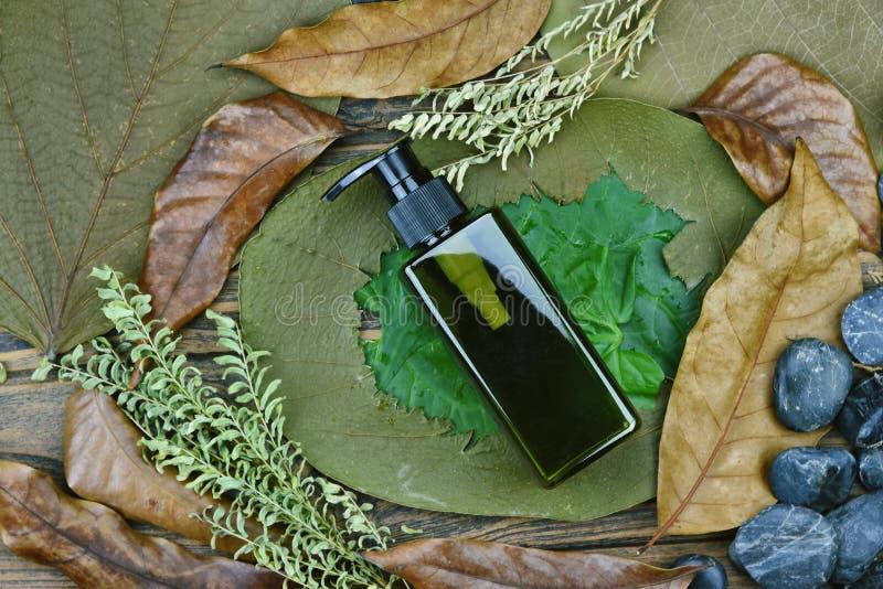 Contenitore di plastica del pacchetto della bottiglia dei cosmetici su sfondo naturale fotografie stock