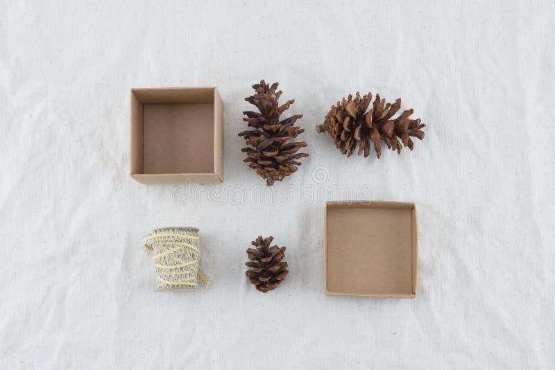 Contenitore di regalo di Brown decorato con i pinecones e la corda immagine stock libera da diritti