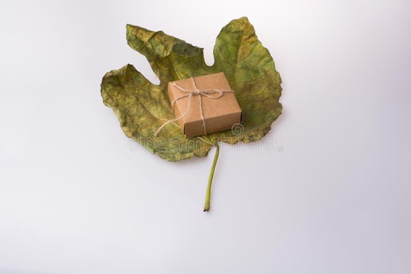 Contenitore di regalo di colore marrone su una grande foglia asciutta fotografie stock libere da diritti