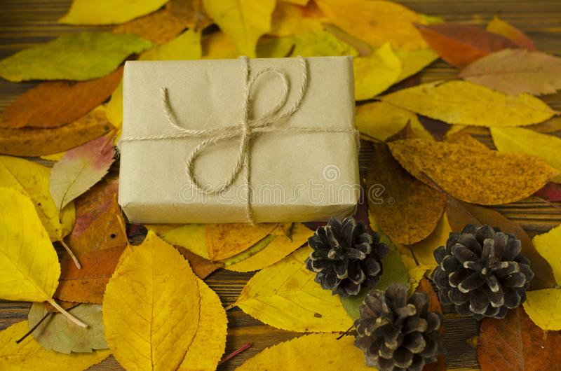 Contenitore di regalo sul fondo colorato delle foglie di autunno fotografie stock libere da diritti