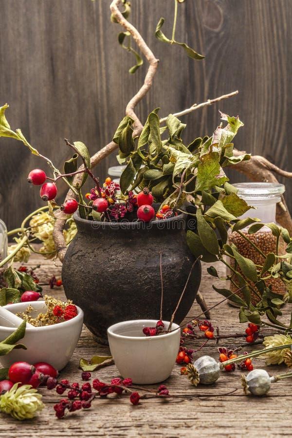 Contesto di Halloween Witch Bowler, mignolo, mirtillo Erbe secche, fiori, bacche fresche immagini stock