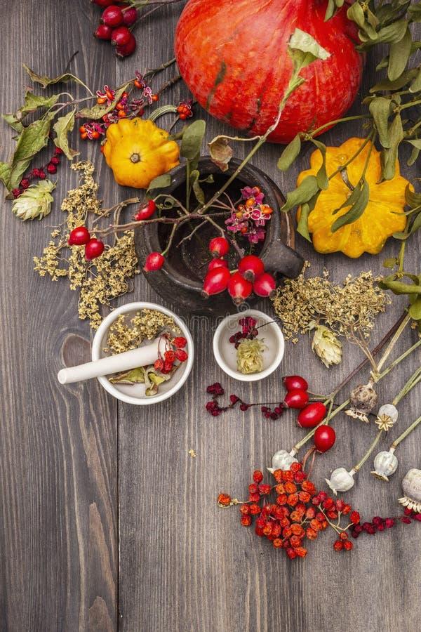 Contesto di Halloween Witch Bowler, mignolo, mirtillo Erbe secche, fiori, bacche fresche fotografia stock