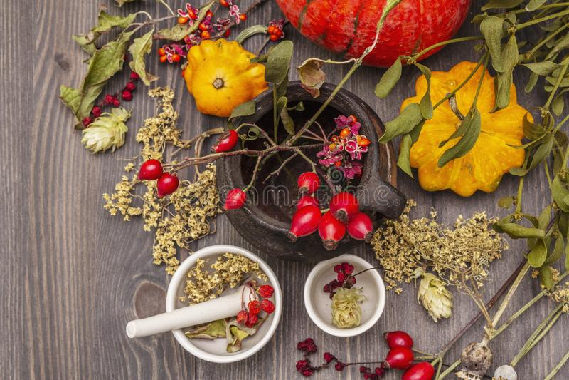 Contesto di Halloween Witch Bowler, mignolo, mirtillo Erbe secche, fiori, bacche fresche fotografie stock libere da diritti