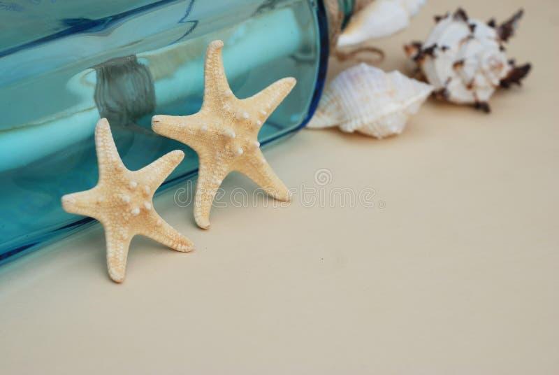 Contesto nautico di tema, stella marina decorativa sul fondo neutrale dell'avorio Posto per testo Fuoco selettivo fotografia stock