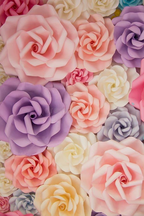 Contexto colorido de la rosa fotografía de archivo