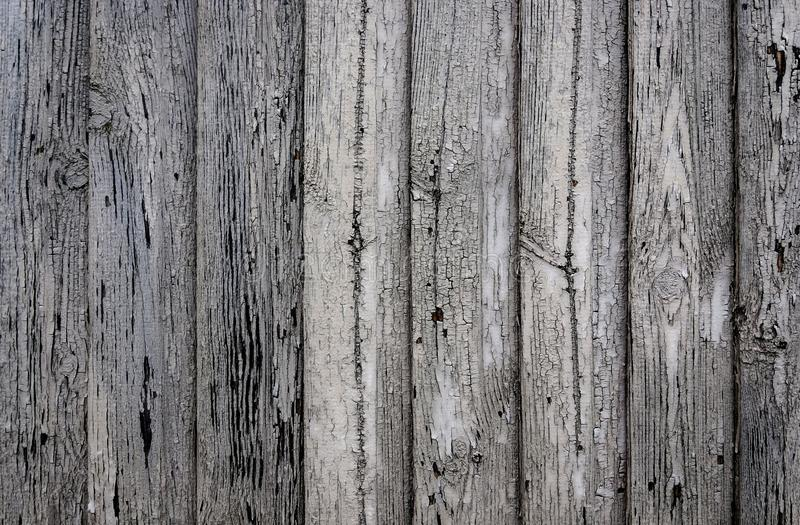 Contexto de madeira cinzento envelhecido do fundo da textura das pranchas foto de stock royalty free