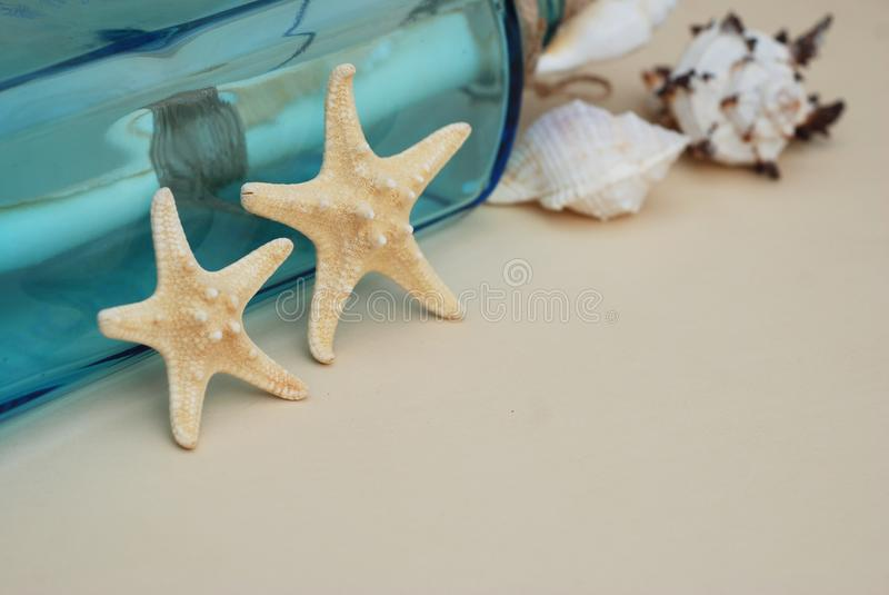 Contexto náutico del tema, estrella de mar decorativa en fondo de marfil neutral Lugar para el texto Foco selectivo foto de archivo
