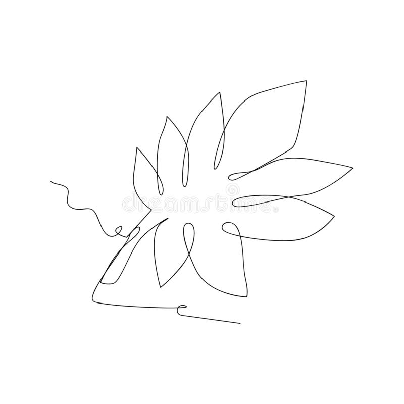 Continuous line drawing of eucalyptus leaves. isolated sketch drawing of eucalyptus leaves line concept. outline thin stroke. Vector illustration vector illustration
