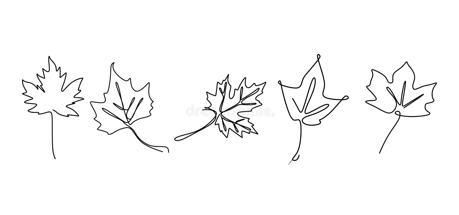 Continuous line drawing of maple leaves hand drawn set collections. Minimal design simplicity autumn theme stock illustration