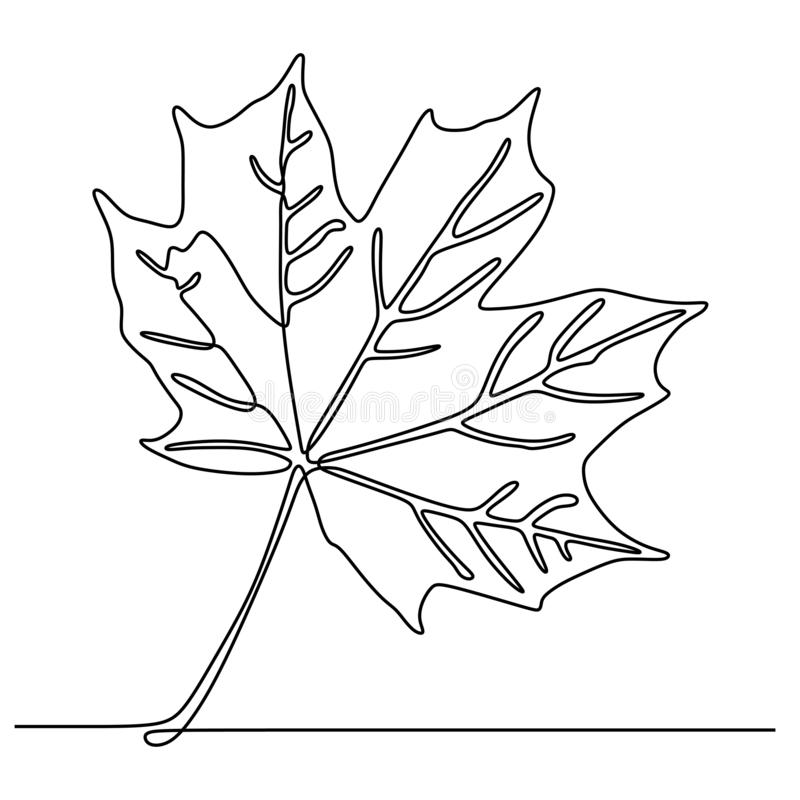 Continuous line drawing of maple leaves one hand drawn lineart design isolated on white background. Symbol, illustration, graphic, nature, autumn, concept vector illustration