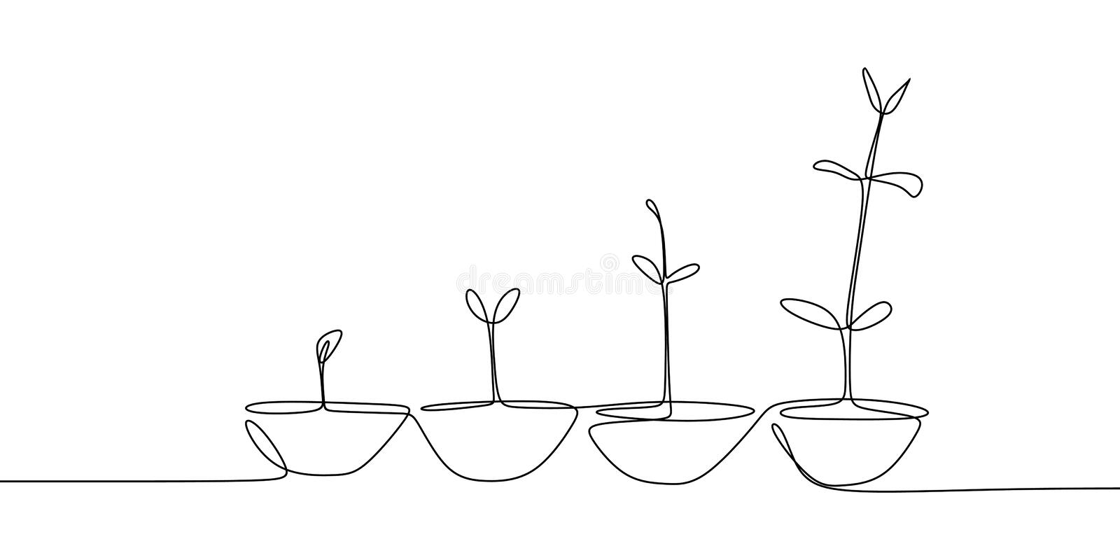 continuous line drawing of plant growth processes stock illustration