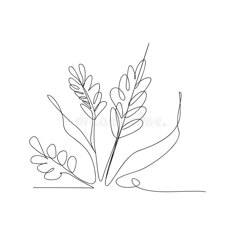 continuous line drawing of rice ears and grains. isolated sketch drawing of rice ears and grains line concept. outline thin stroke stock illustration