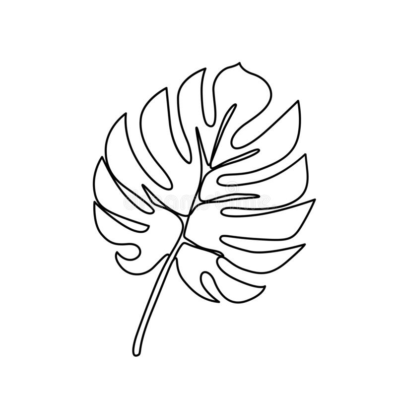 Continuous Line Monstera Leaf Tropical Leaves Contour Drawing Stock Vector Illustration Of Monstera Minimal 172452682 Then i overlaid the drawings to create this modern illustration. continuous line monstera leaf tropical