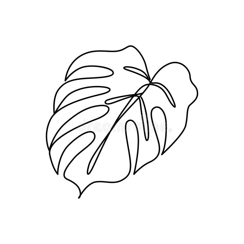 Continuous Line Monstera Leaf Tropical Leaves Contour Drawing Stock Vector Illustration Of Creative Exotic 172452777 Select from premium tropical leaf images of the highest quality. continuous line monstera leaf tropical