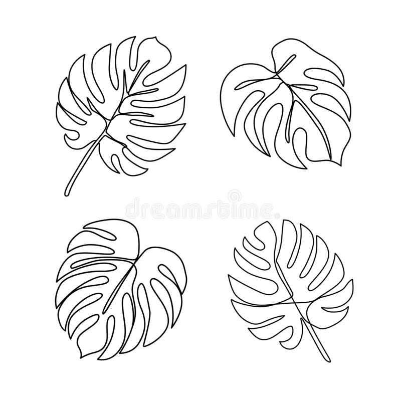 Continuous Line Monstera Leaf Tropical Leaves Contour Drawing Stock Vector Illustration Of Outline Exotic 172452975 Discover 75 free tropical leaves png images with transparent backgrounds. continuous line monstera leaf tropical