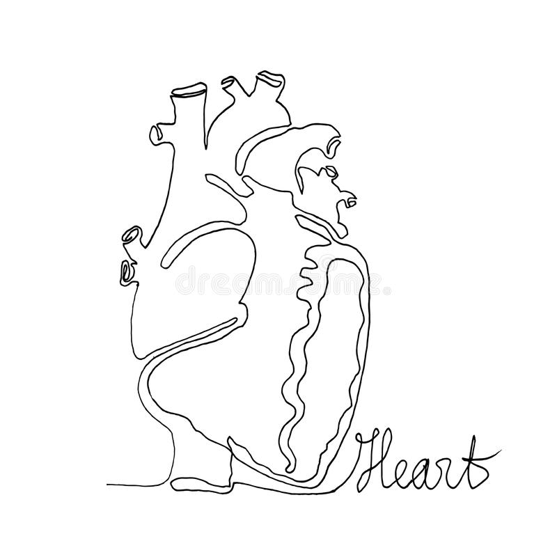 Simple One Line Text Art : Continuous one line drawing anatomy humans heart