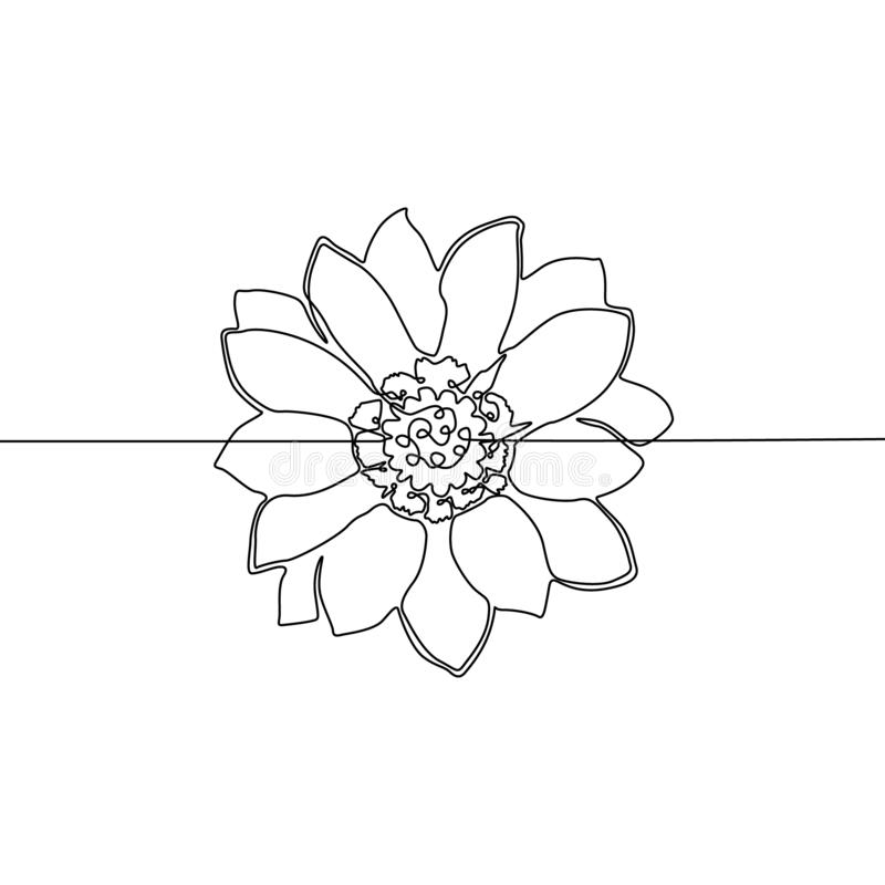 Continuous one line drawing Flower. Vector illustration. royalty free illustration
