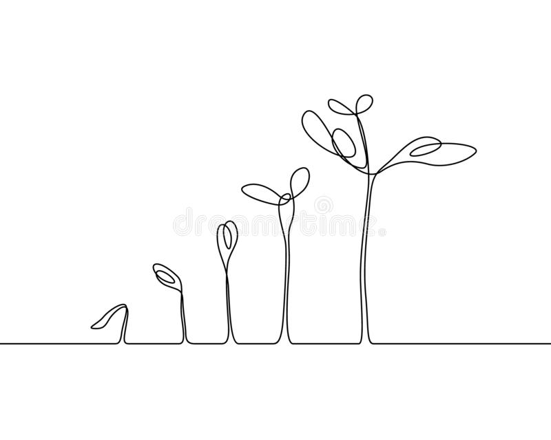 Continuous one line drawing Plant growth process. Vector illustration royalty free illustration