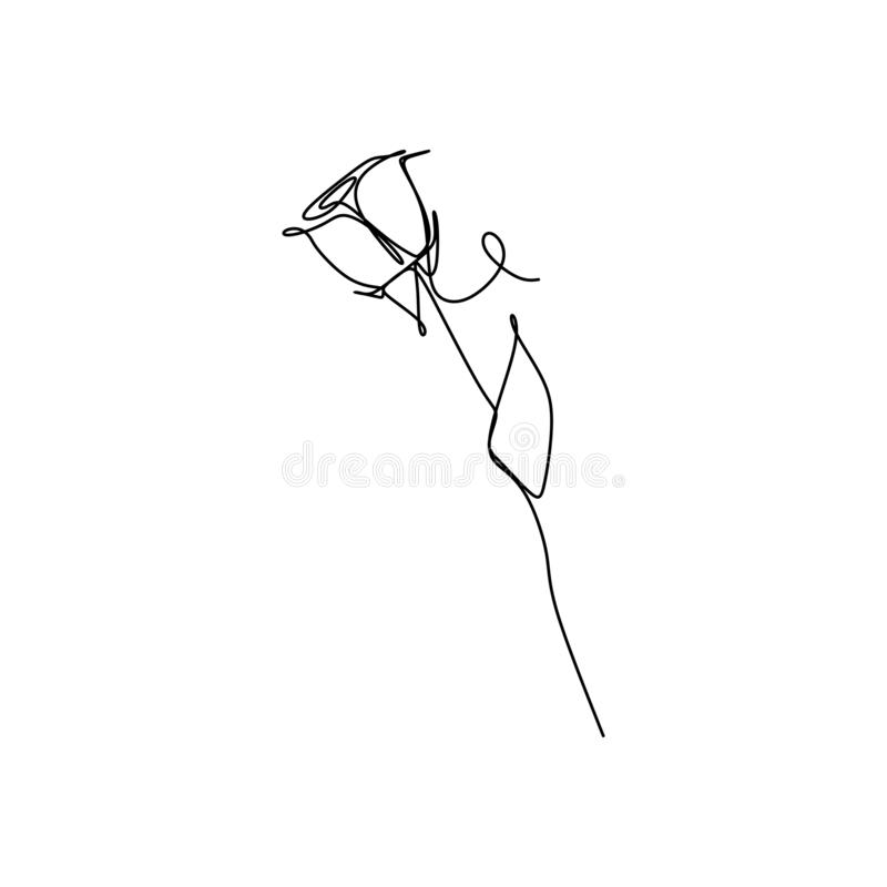 Continuous one line drawing vector illustration of rose flower minimalist design minimalism concept royalty free illustration