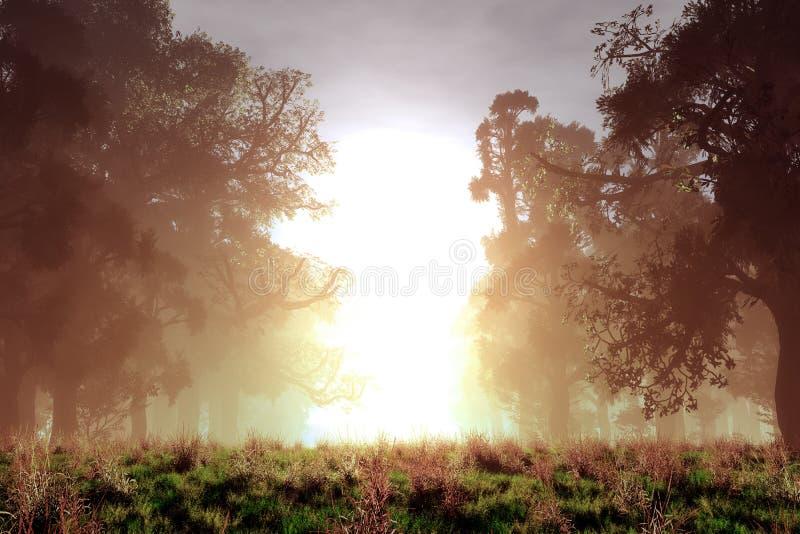 Conto de fadas mágico misterioso Forest Sunset Sunrise da fantasia ilustração stock