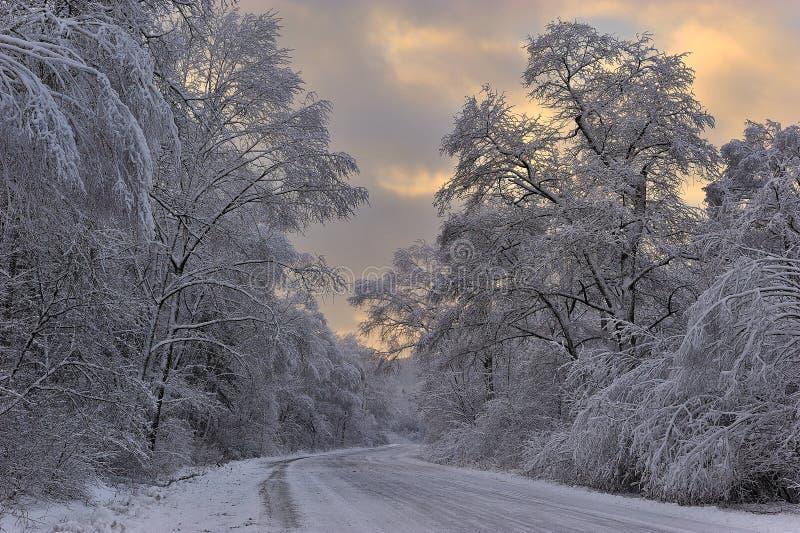 Conto do inverno. fotos de stock