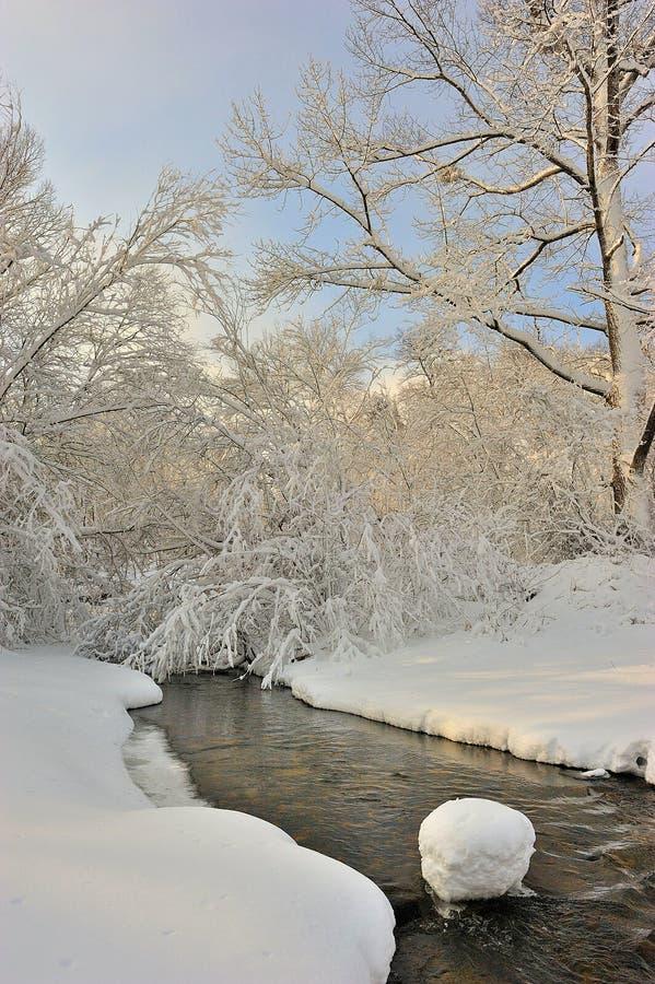 Conto do inverno. fotografia de stock