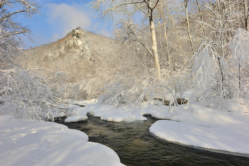 Conto do inverno. foto de stock royalty free