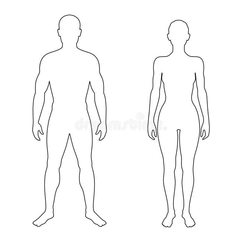 Contorni della donna e dell'uomo illustrazione vettoriale