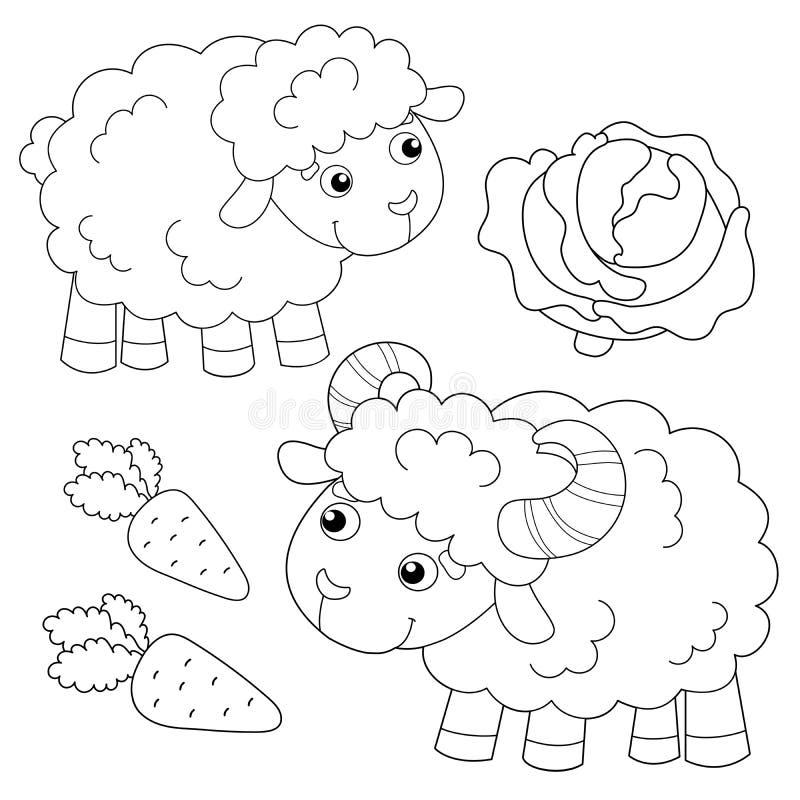 Contorno Della Pagina Di Colorazione Delle Pecore Da Disegno Con Agnello Animali Da Allevamento Libro Di Colorazione Per Bambini Illustrazione Vettoriale Illustrazione Di Agnello Formazione 166327458