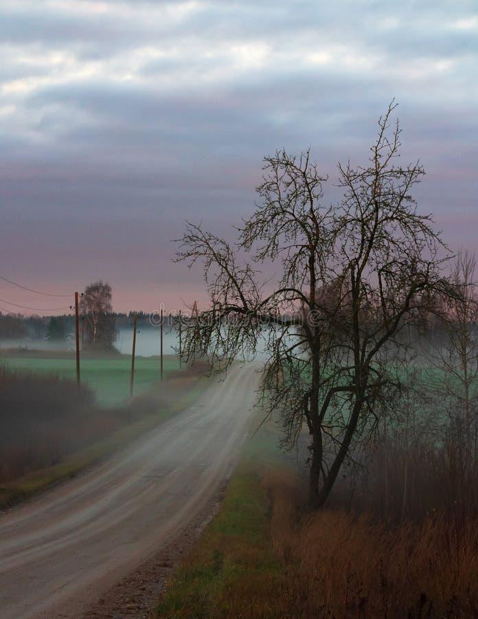 contorno di legno nero sulla strada rurale fotografia stock libera da diritti