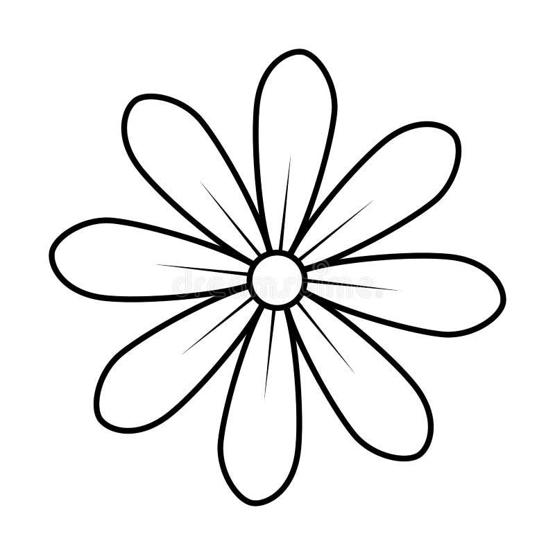 Contorno monocromático del diseño floral del icono de la flor de la margarita libre illustration