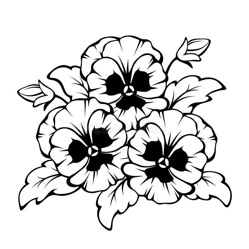 Contorno preto de flores do amor perfeito Ilustração do vetor ilustração stock