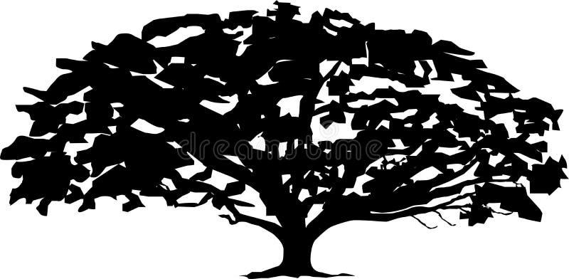 Contour de blanc de noir d'arbre de vecteur photographie stock libre de droits