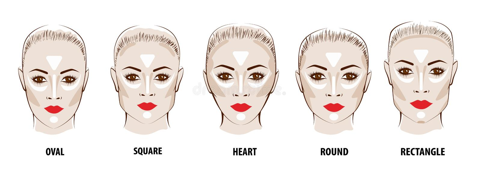 Contour and Highlight makeup. Contouring face make-up. Fashion illustration royalty free illustration
