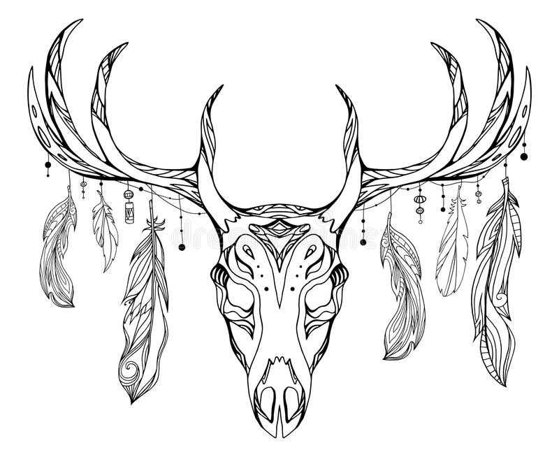 Deer Contour Line Drawing : Contour illustration of a deer skull with antlers stock