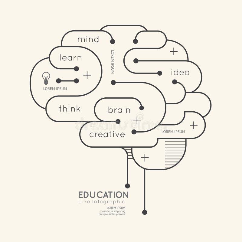 Contour linéaire plat Brain Concept d'éducation d'Infographic Vecteur illustration libre de droits