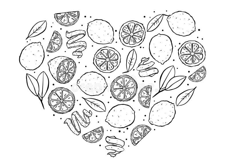 Contour noir de citrons de coeur illustration stock