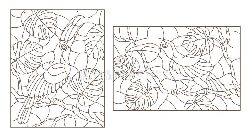 Contour set with with birds toucans on branches of a tropical tree , a dark outline on a white background. Set contour illustrations with birds toucans on vector illustration
