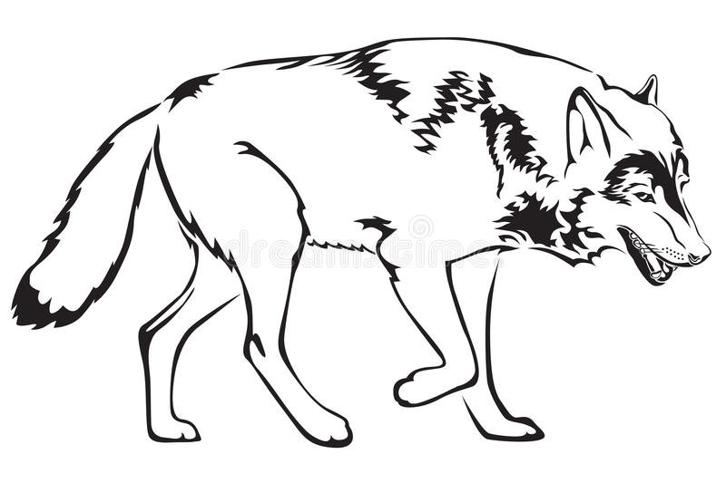 Download Contour Of Wolf Stock Photo - Image: 23795110