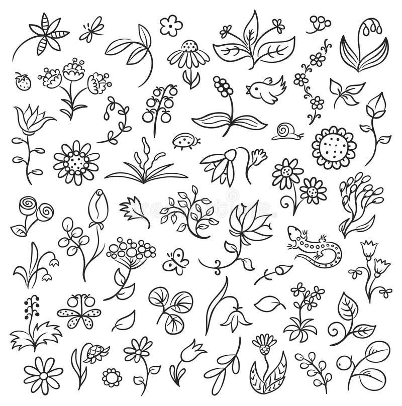 Contours d'éléments de conception florale illustration stock