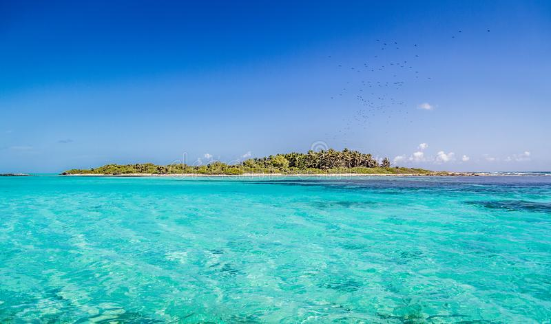 Contoy Island in Mexican Caribbean Sea stock photography