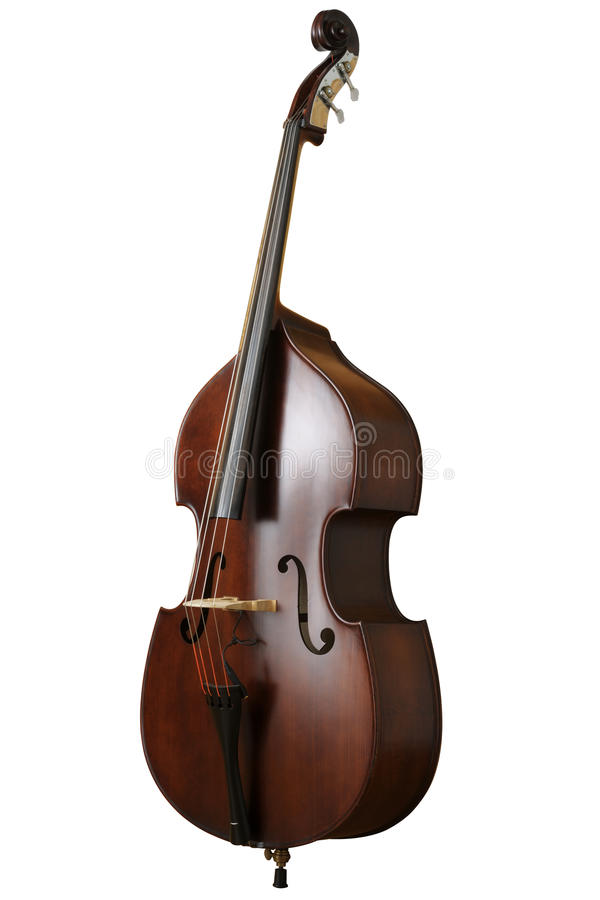 Contrabass royalty free stock images