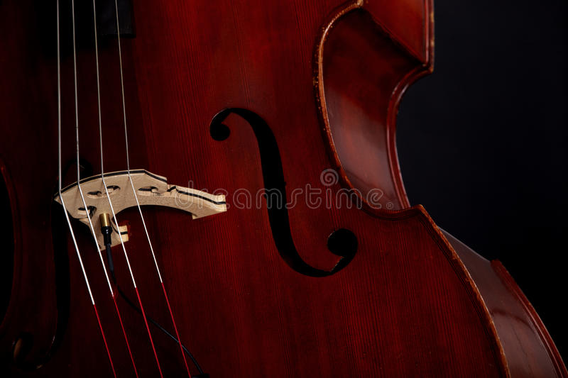 Download Contrabass stock photo. Image of stringed, object, bass - 24561690