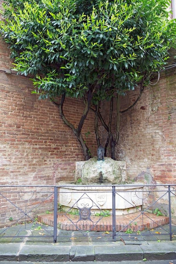 Contrade de Siena, Toscânia, Itália fotos de stock
