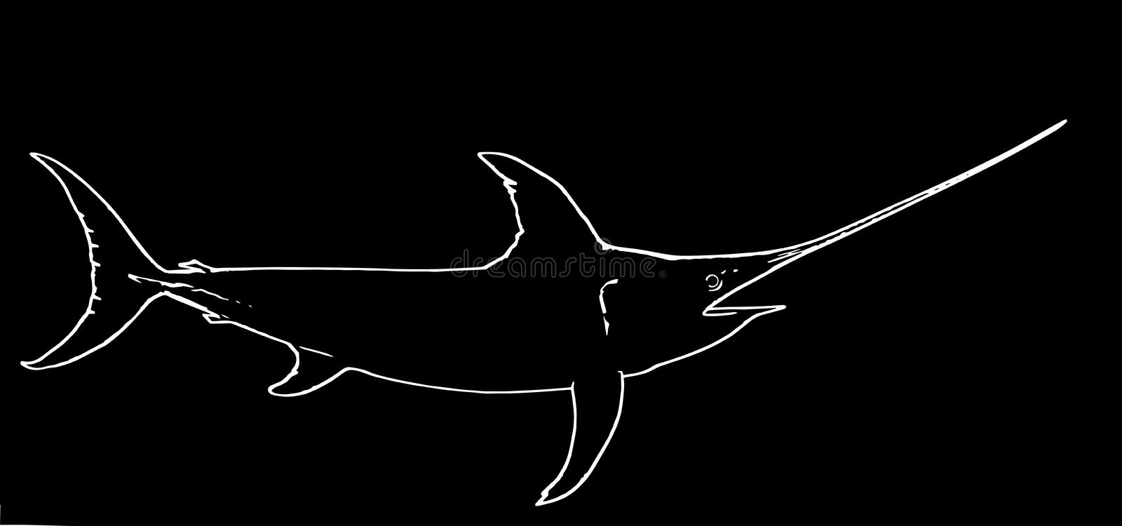 Swordfish game fishing on black background. Contrary to popular belief, the `sword` is not used to spear, but instead may be used to slash at its prey to injure stock illustration