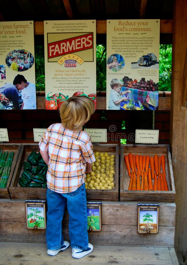 Contrassegno del mercato degli agricoltori della lettura del bambino fotografie stock libere da diritti